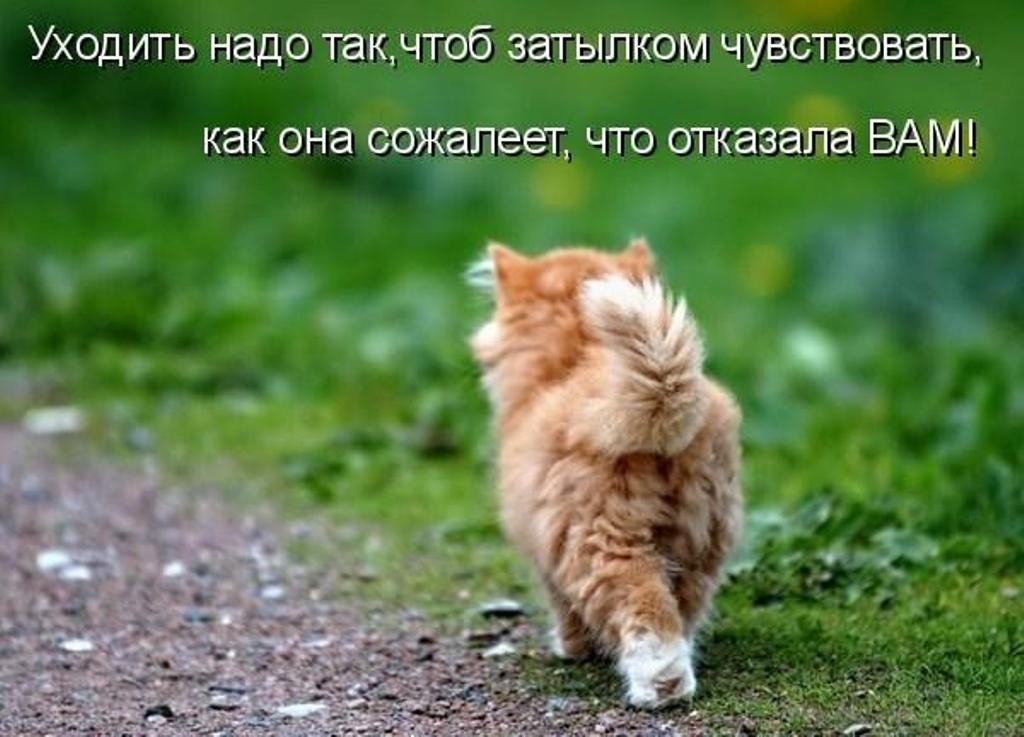 http://nadpis.com.ua/wp-content/uploads/2010/04/nadpiscomuainogda-nuzhno-uxodit-ot-lyubimyx.jpg