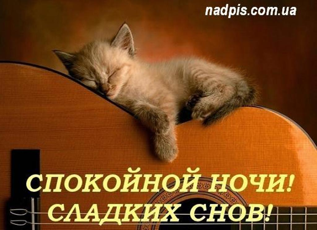 приятных снов картинки с надписями
