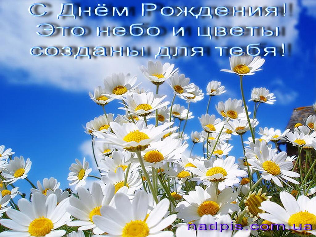 Это небо и цветы созданы для тебя