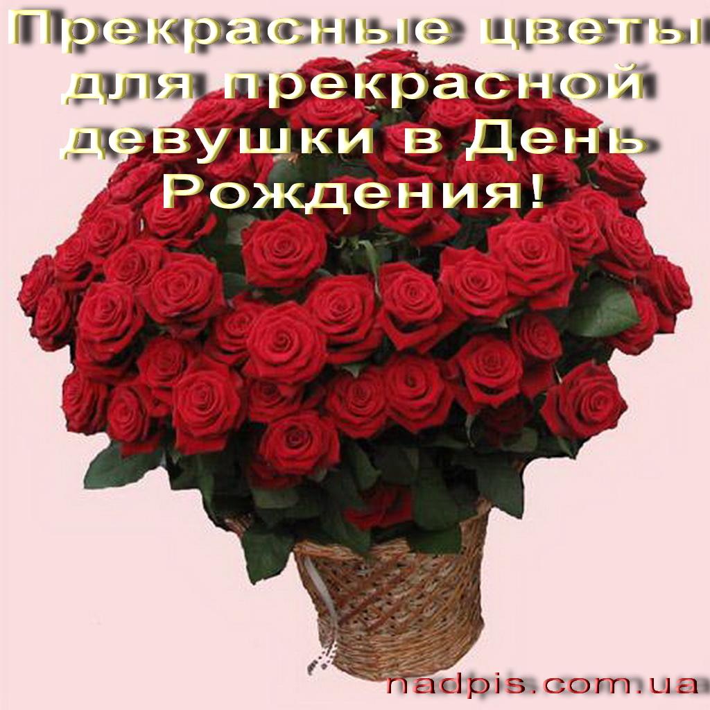 Поздравления с днём рождения женщине подруге красивые прикольные