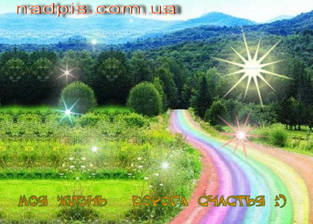 Разноцветная дорога счастья