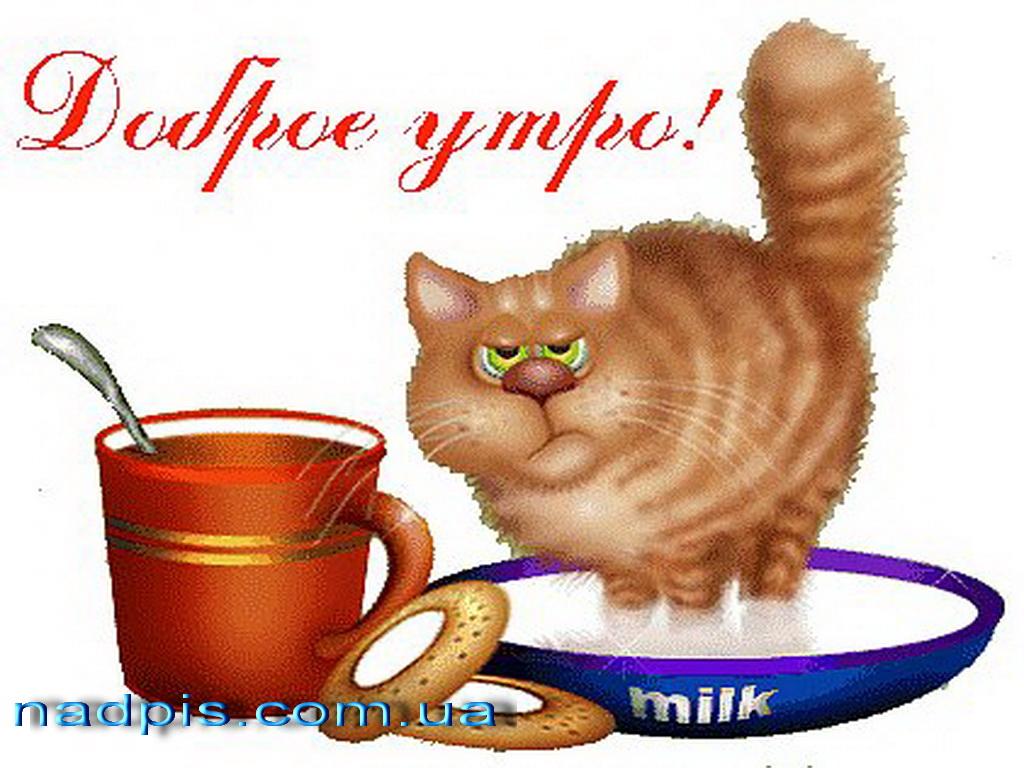 httpnadpis.com_.uakartinka-dobroe-utro.j