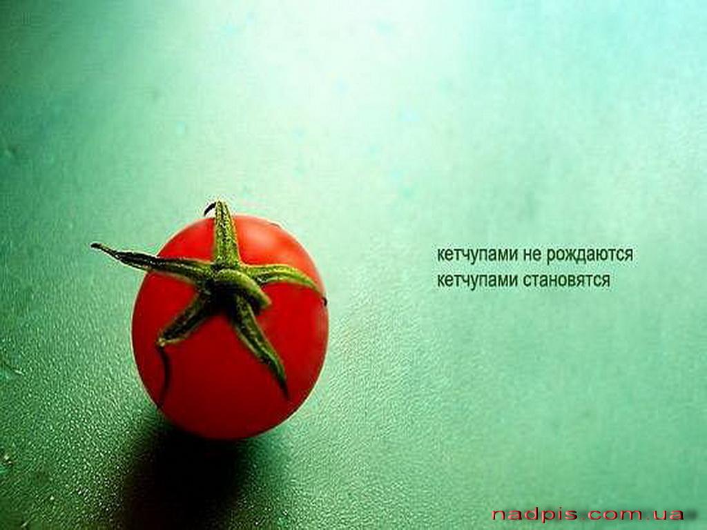 Кетчупами не рождаются