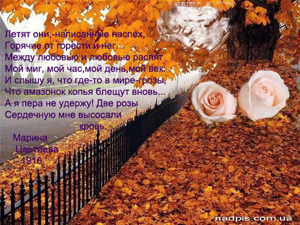 Шутливые картинки про осень