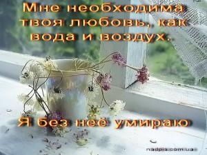 http://nadpis.com.ua/wp-content/uploads/2010/07/httpnadpis.com_.uaneobxodima-lyubov-ya-umirayu-300x225.jpg