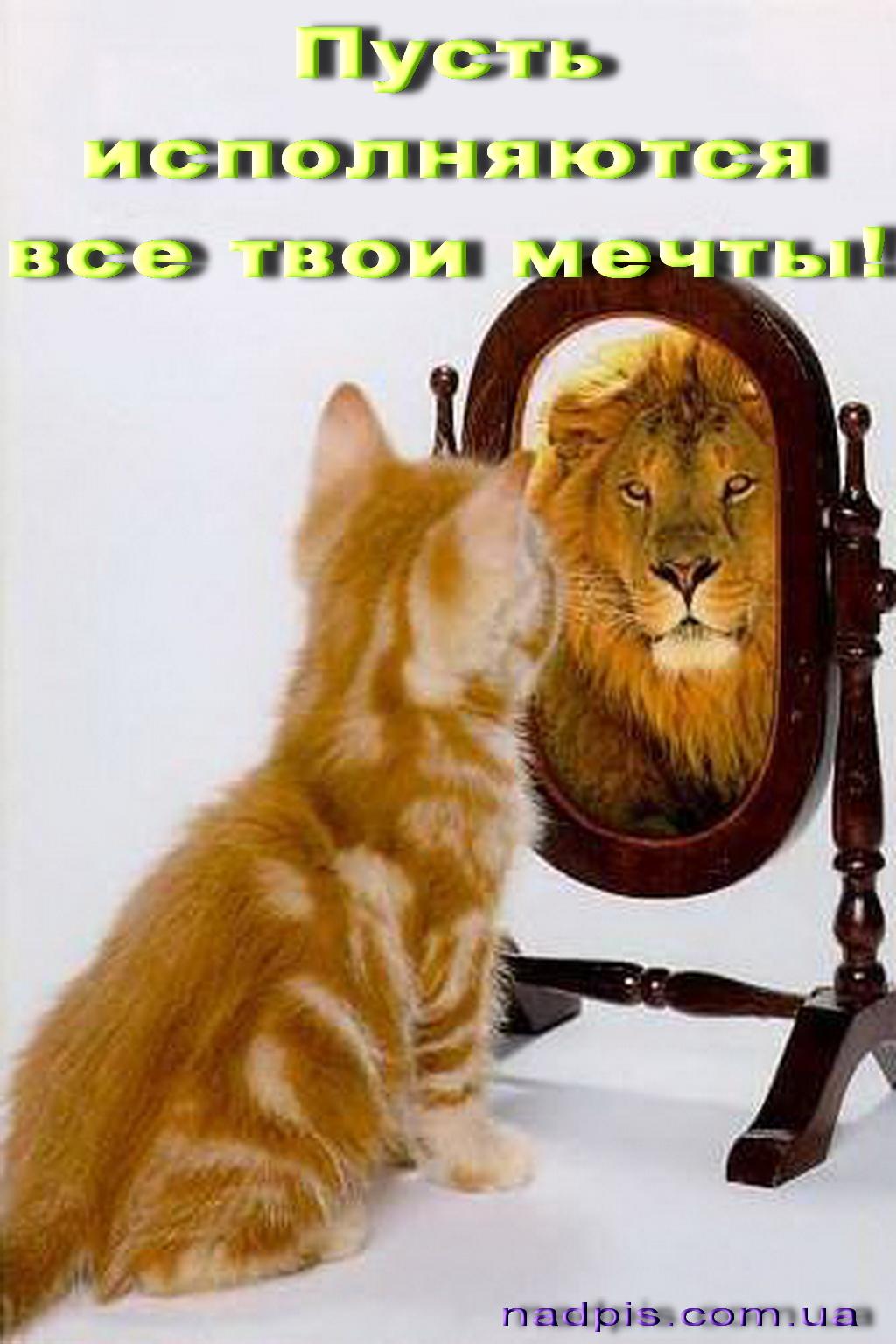 Именины Лев, поздравление Льву - Поздравок 57