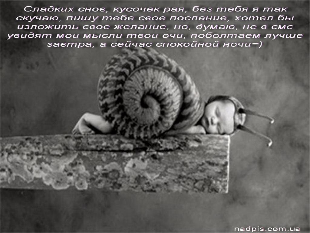 Сладких снов, кусочек рая