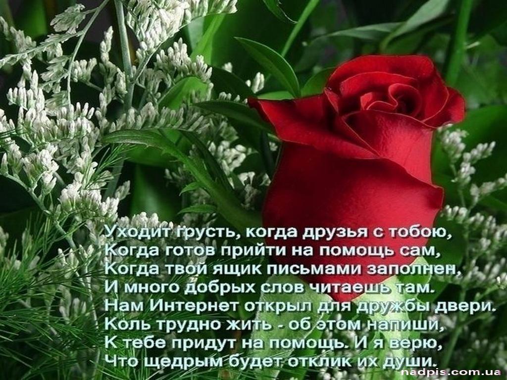 Поздравления в стихах и прозе другу