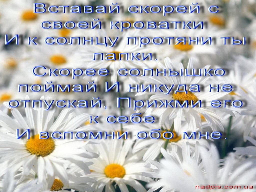 Анна Данькова Голая Порно
