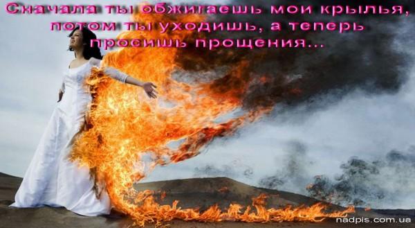 Обжигаешь мои крылья