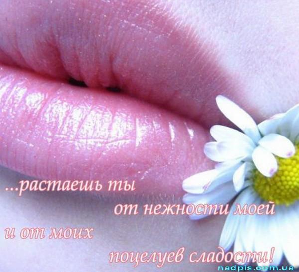 Растаешь ты от поцелуев