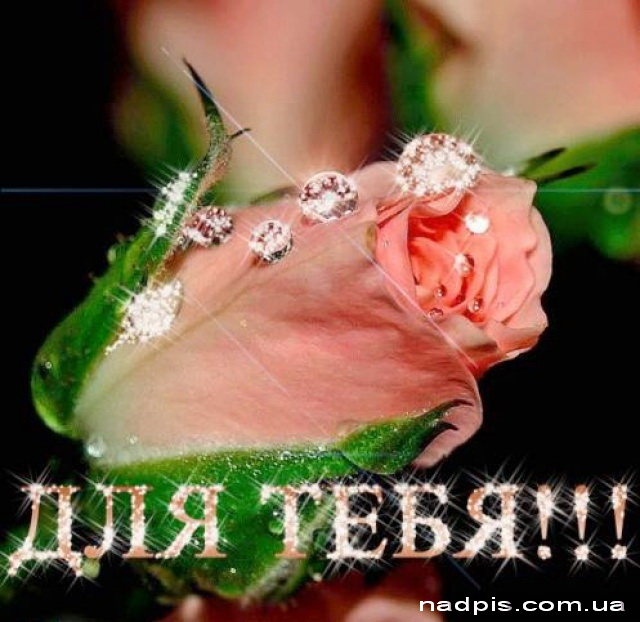 Картинки цветы с надписями для любимой девушки