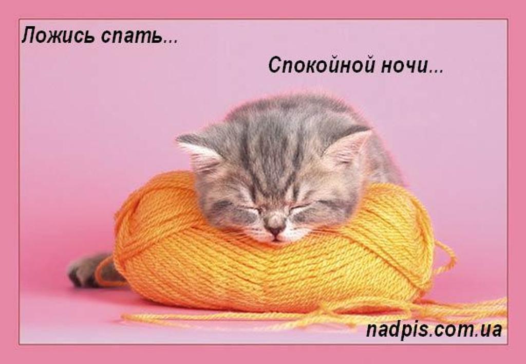 http://nadpis.com.ua/wp-content/uploads/2010/04/nadpiscomualozhis-spat.jpg